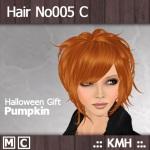 HairNo005_C_Pumpkin