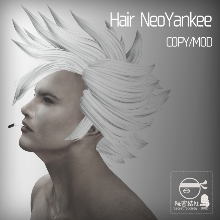HairNeoYankee1024