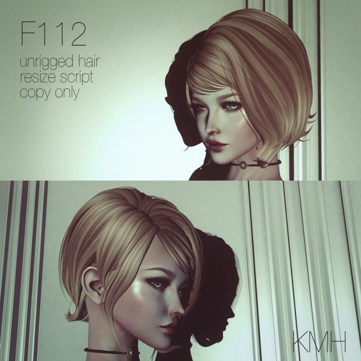 Hair_F112_1